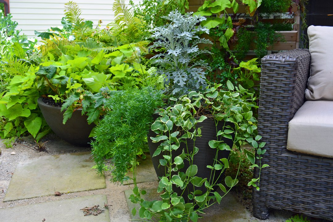 Garden Design Course Uk Container Gardening Ideas