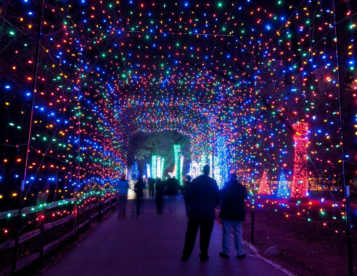 Is Zoo Lights Open On Christmas Decoratingspecial Com