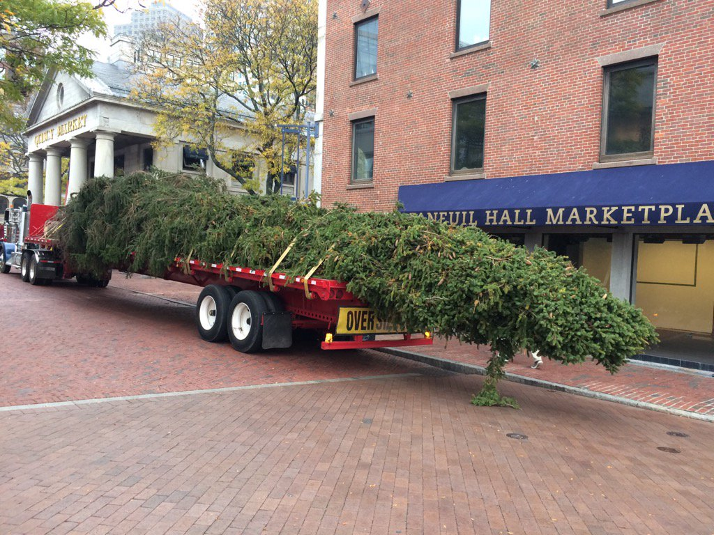 The @FaneuilHall Tree has arrived! @universalhub @HelloGreenway @VisitBoston @theurbanologist @NorthEndBoston https://t.co/fznfn8bcai