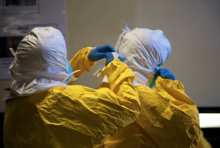 A mutation in the Ebola virus made the epidemic in West Africa even more deadly