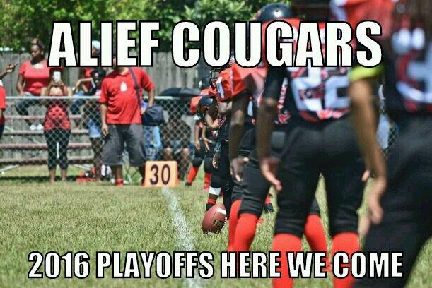 Alief cougars