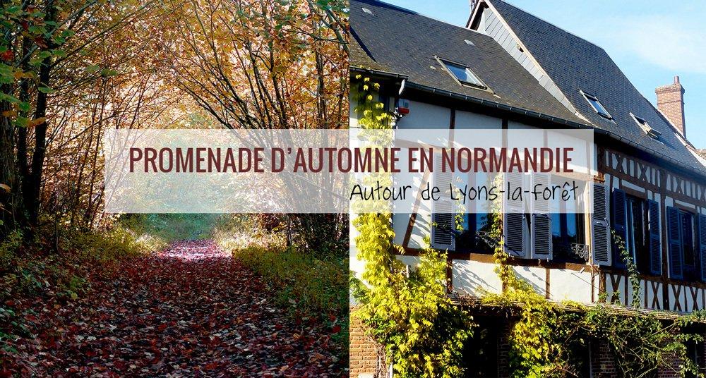 Normandie tourisme normandie twitter - La foret fouesnant office de tourisme ...