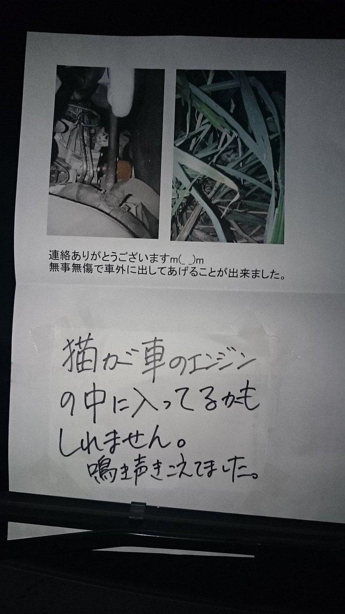 連絡主様にお礼の手紙をしたためてワイパーにはさんどく、感謝感謝♪