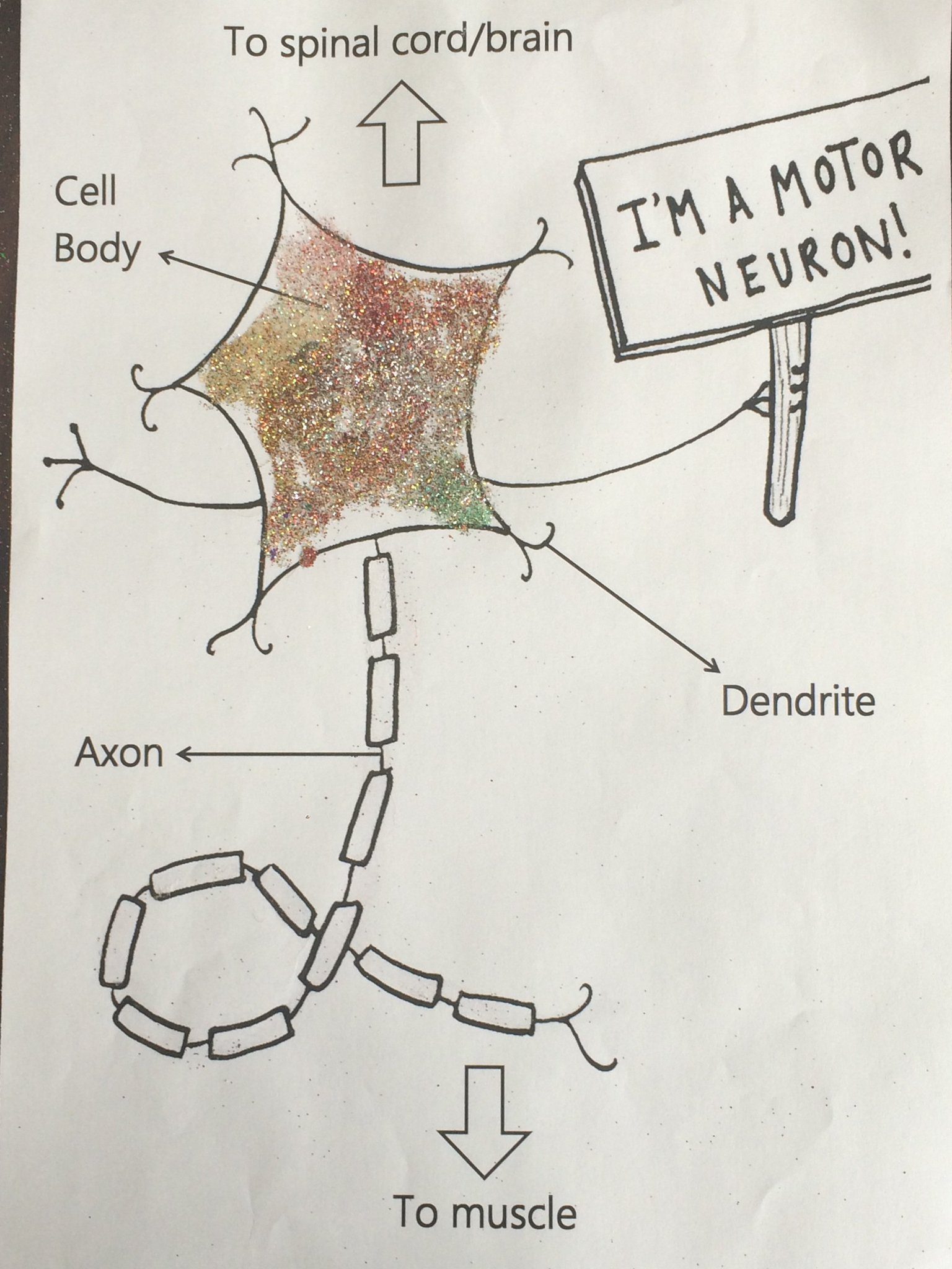 Inspiring Children into Science through Art: entry 18: #STEM #scienceisfun #stemcells #sciart #Innovate4globaled #edutweets @PataniLab https://t.co/sWY156bLTN