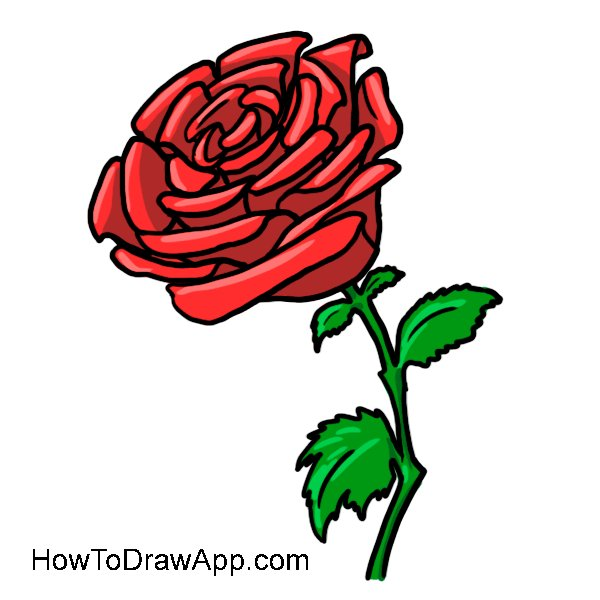 How to draw on twitter try to draw a beautiful rose and share try to draw a beautiful rose and share your drawings of a rose with us httpnicedrawinglessonshow to draw a rose ccuart Image collections