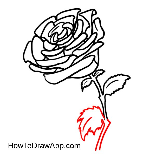 How to draw on twitter try to draw a beautiful rose and share 850 pm 5 nov 2016 ccuart Image collections