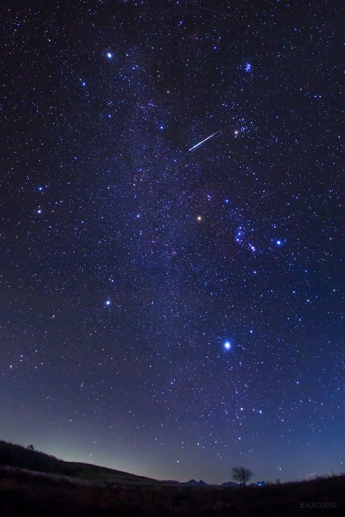 冬の大六角形の中を飛ぶ、おうし座流星群の流れ星。 冬の大六角形は、リゲル、シリウス、プロキオン、ポルックス、カペラ、アルデバランを結んだ大きな星つなぎの環です。 (今朝未明、長野県にて撮影)