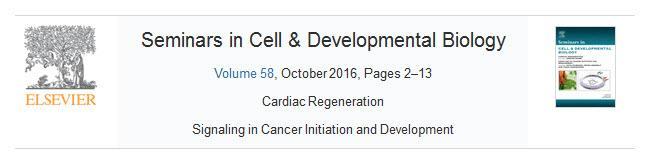 Krebs — Ein Handbuch für Betroffene, Angehörige und