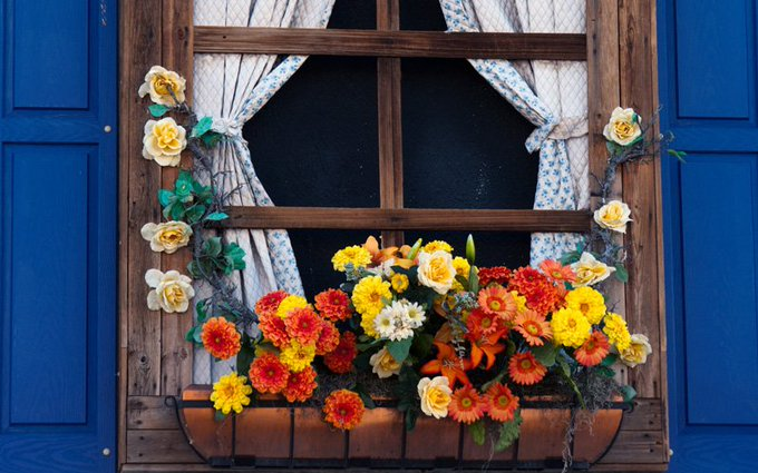 Embrace the natural beauty of autumn with these fun fall windowboxes! homedecor DIY