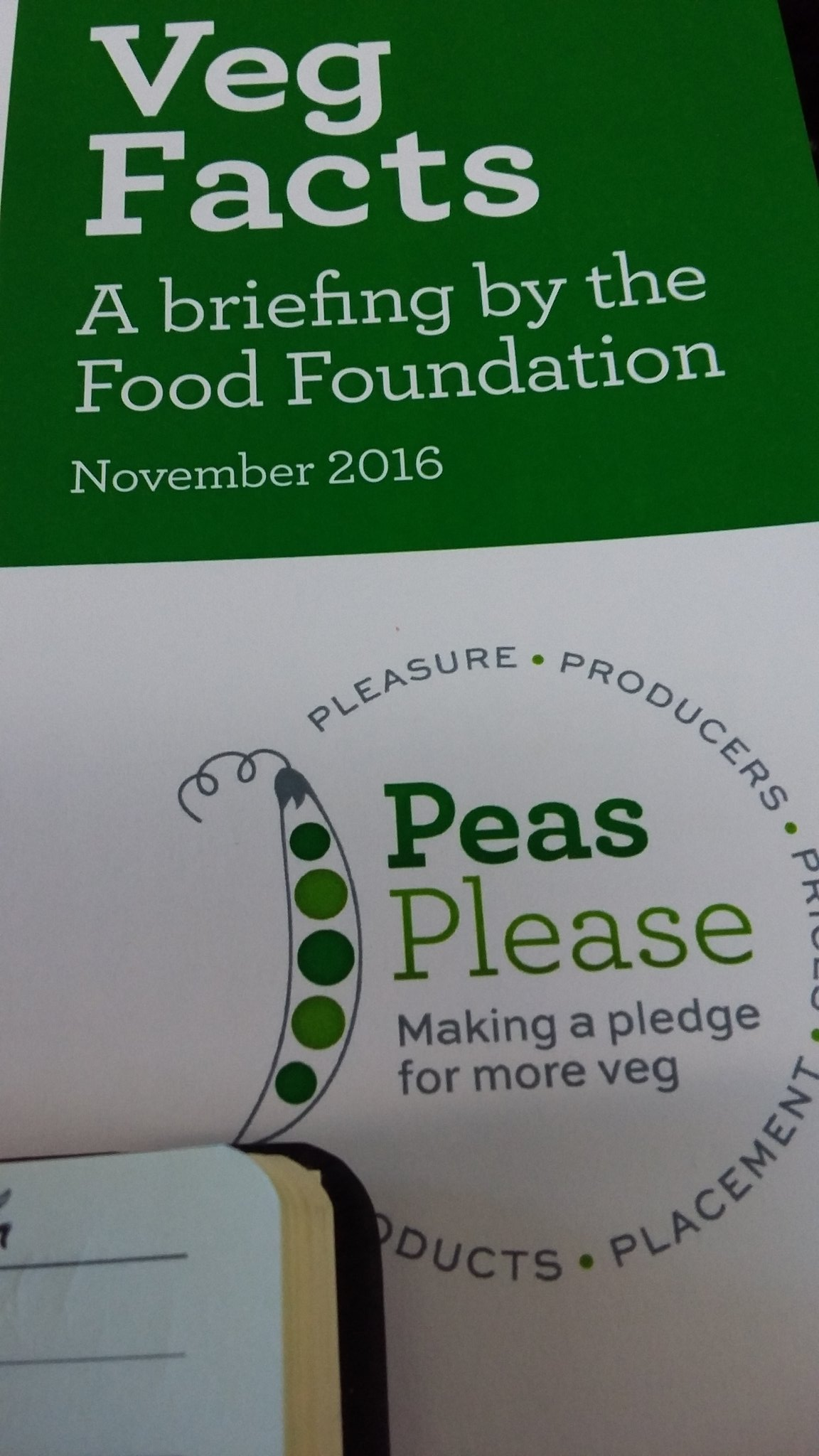 At @nourishscotland  #peasplease launch in Glasgow  with @SlowFoodWScot @slowfoodglasgow @SaosSupply @scotfooddrink @howardfarm .. more veg https://t.co/3ssUDqmzYU