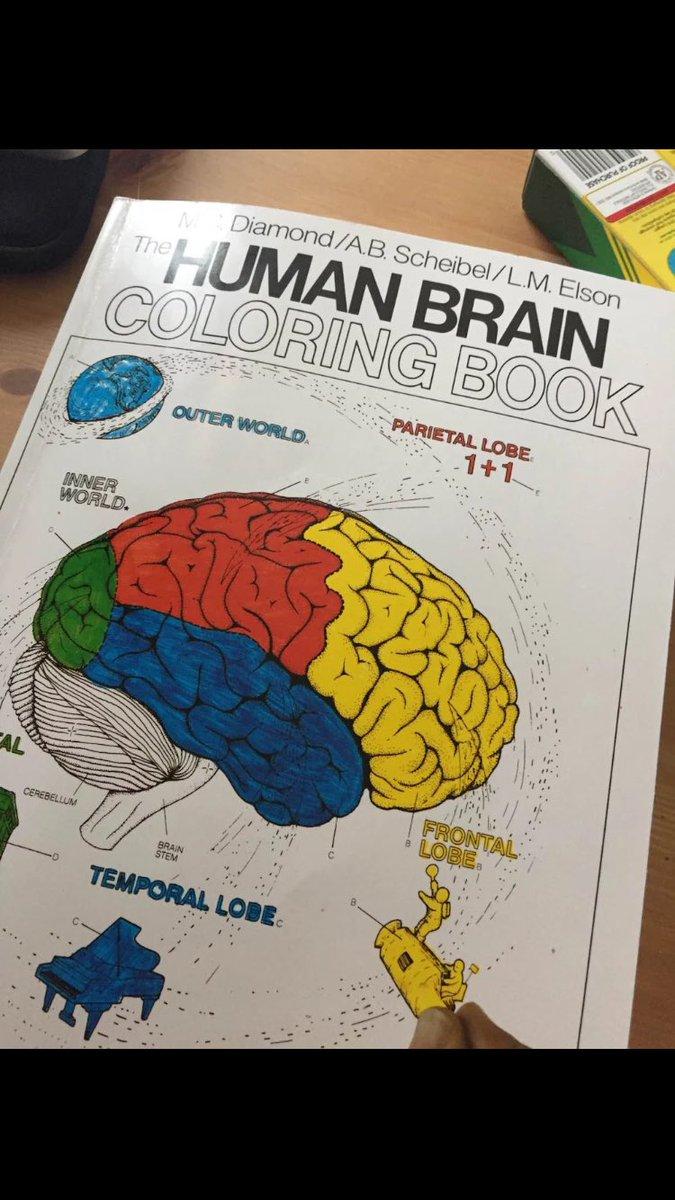 The human brain coloring book diamond - 1 Reply 1 Retweet 10 Likes