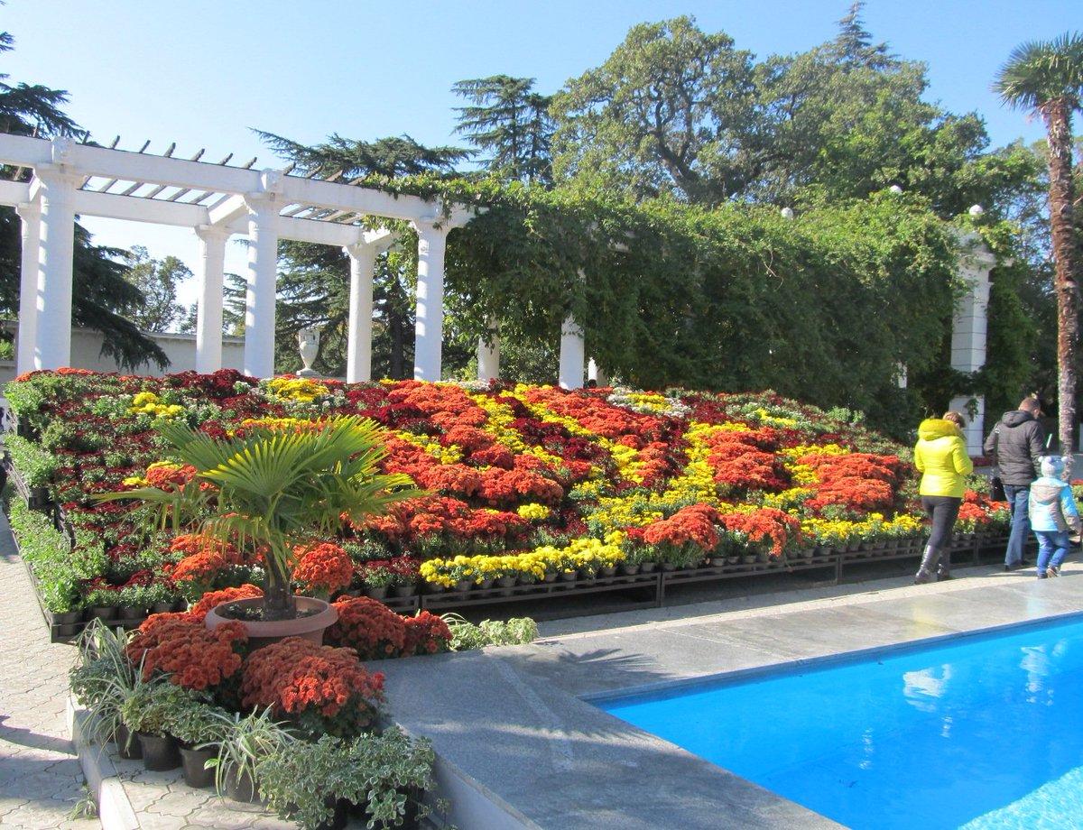 отличный никитинский ботанический сад в ялте фото россии
