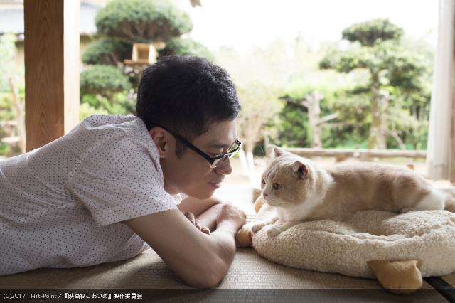 人気アプリ「ねこあつめ」が実写映画化!伊藤淳史、スター猫たちと共演 #ねこあつめ #実写化 #シナモン https://t.co/5lSlS4ZtfT
