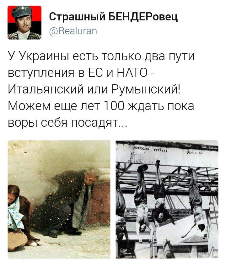 Украина стала заложником визового вопроса между ЕС и Турцией, - евродепутат Сариуш-Вольский - Цензор.НЕТ 6938