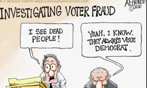 Image result for cartoon democrat voter fraud