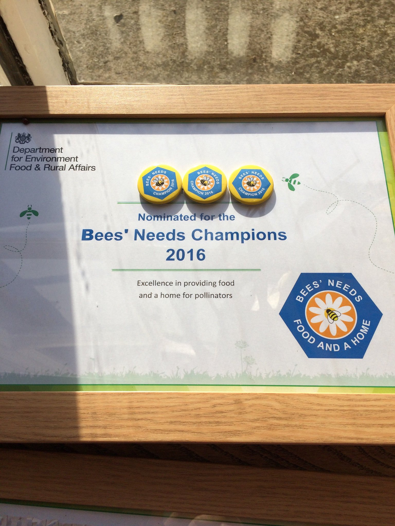 Thumbnail for #BeesNeeds Champions Awards 2016