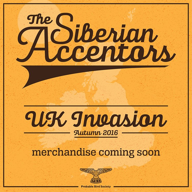 Siberian Accentors
