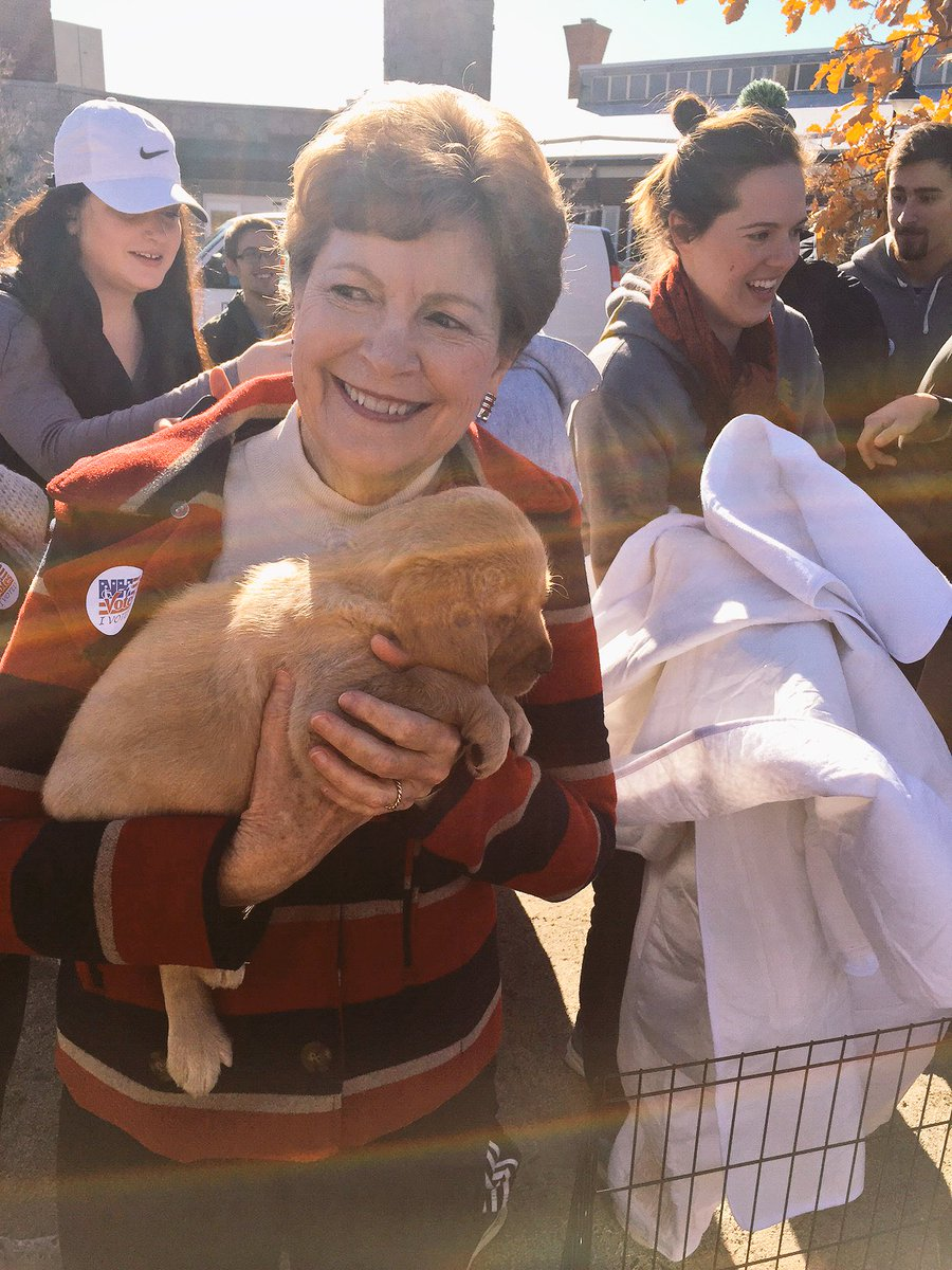 Puppies at the polls--an idea we can all get behind! #nhpolitics