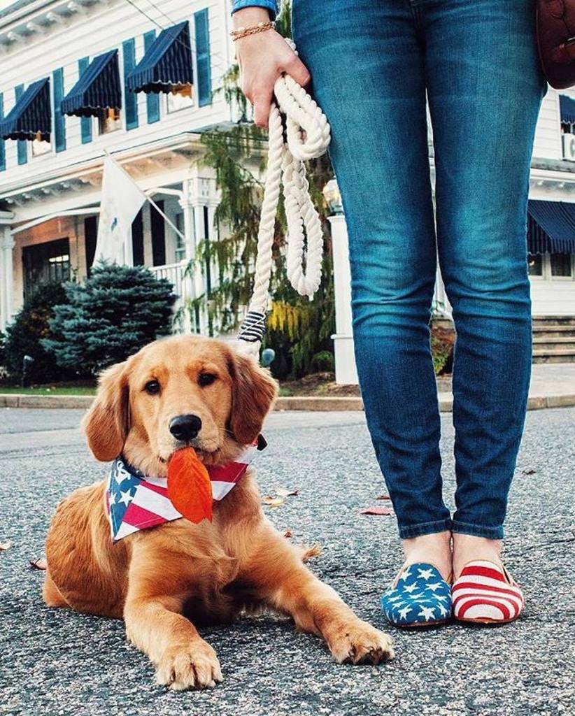 #Repost @vineyardvines Putting our best foot (or paw) forward today!