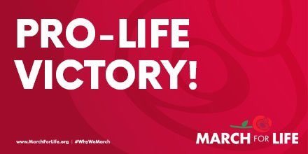 Pro-life victory! The US Senate retains its #prolife majority. #ElectionNight https://t.co/KS9cO3a9Ss