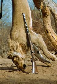 I wish the hunter was hanging upside down and the #lion was running free. <br>http://pic.twitter.com/gKvd6QjD5X