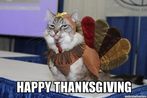 News spacecats in space happy thanksgiving kittens sciox Image collections