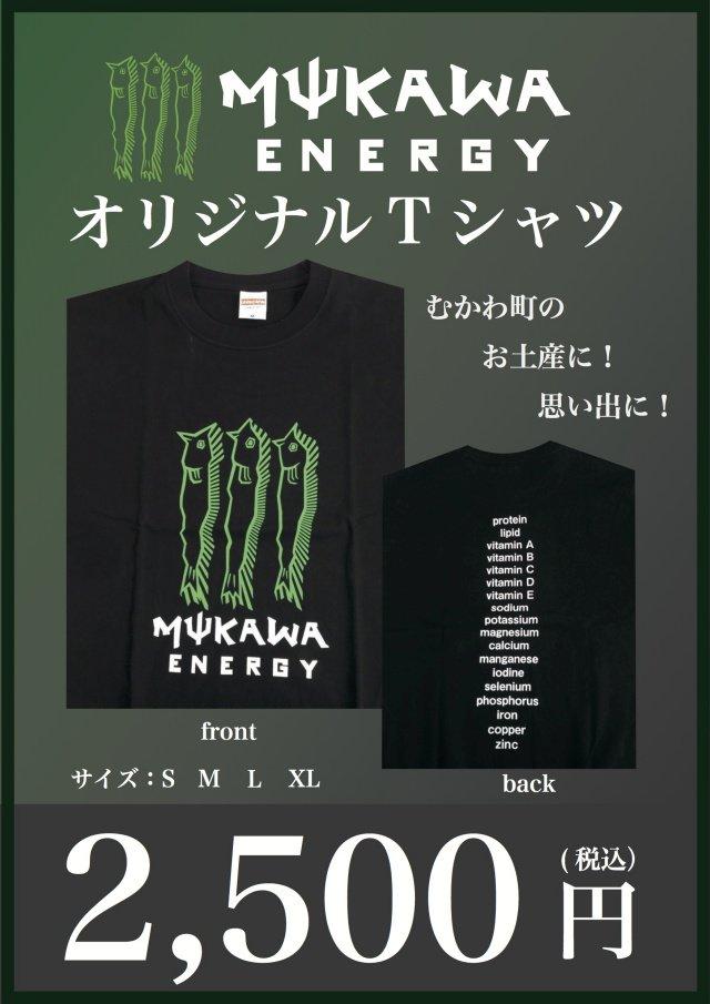 北海道むかわ町の「MUKAWA ENERGY」Tシャツやられた^^; https://t.co/crwAnJH2cZ https://t.co/TxFmAZEDW9