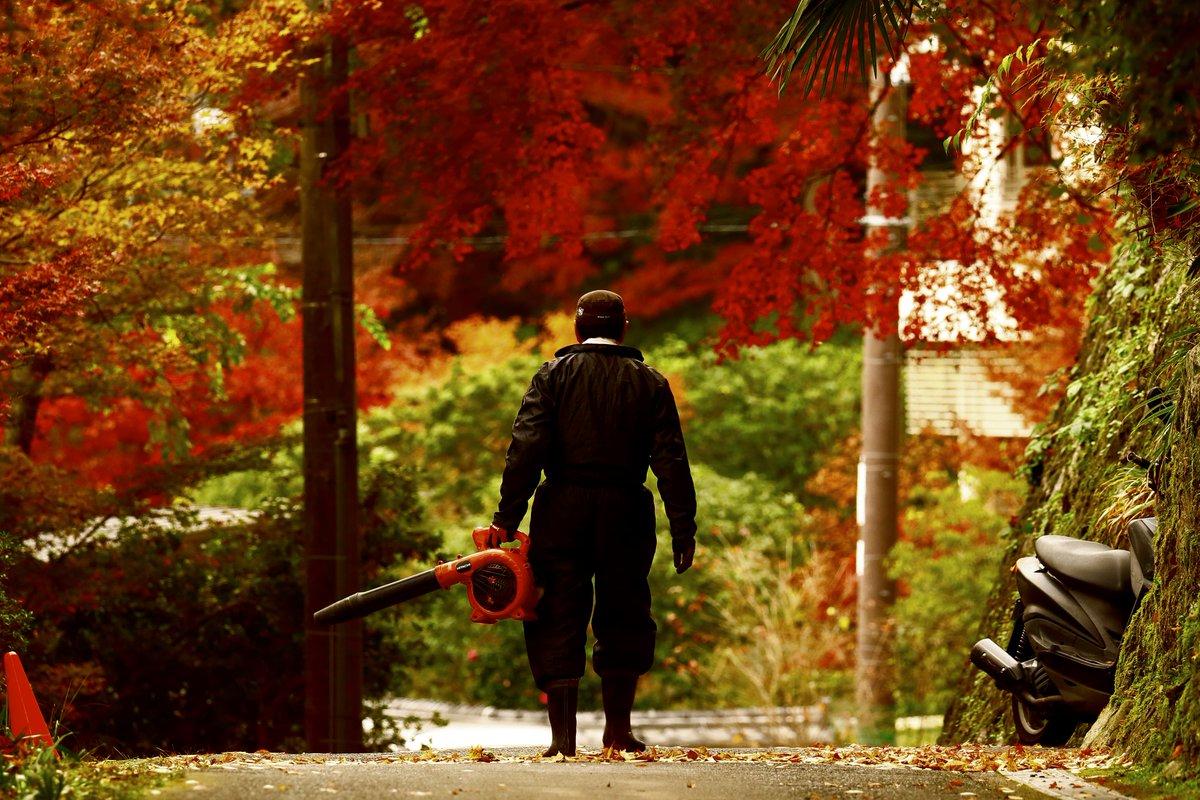 落ち葉の掃除してたおっちゃんの、これから戦場に赴く歴戦の戦士感凄かった pic.twitter.com/7P2AdwSFzr