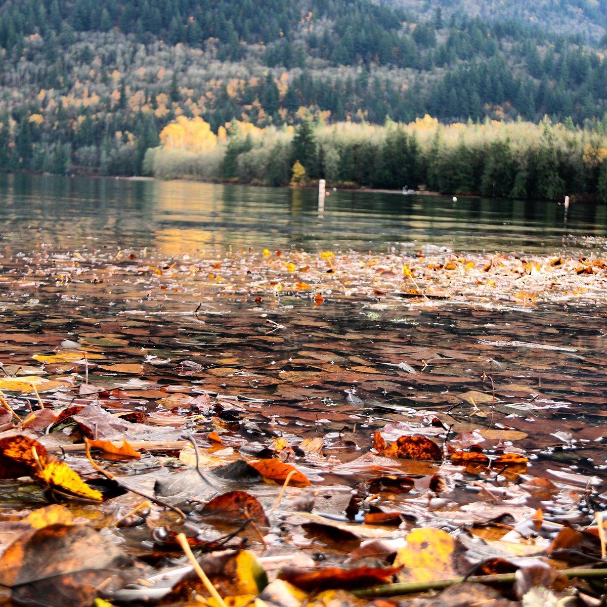 Cultus Lake Resort Bc
