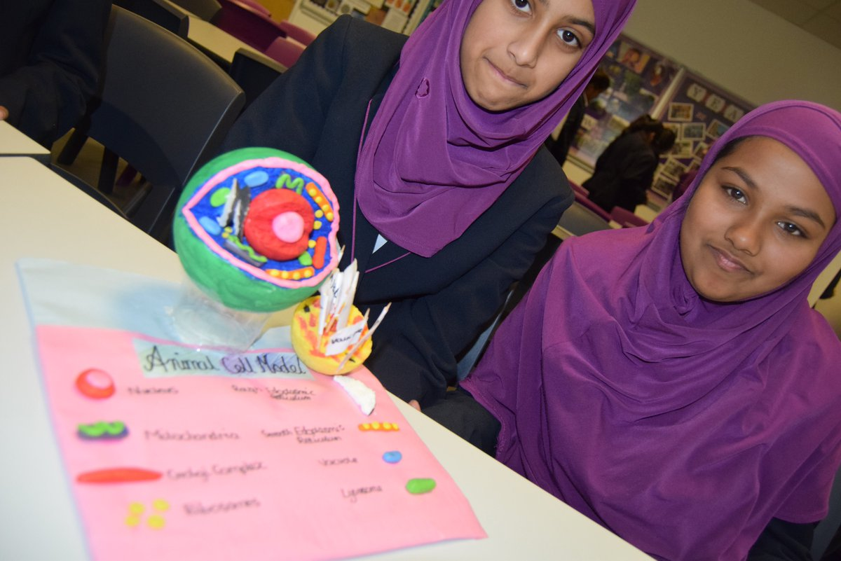 slough girls Staff, governors, pupils and parents from eden girls' school, slough are celebrating after the school was awarded 'outstanding' in every category in its first inspection since opening in 2015.
