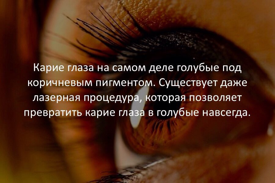 Приколы про голубые глаза в картинках