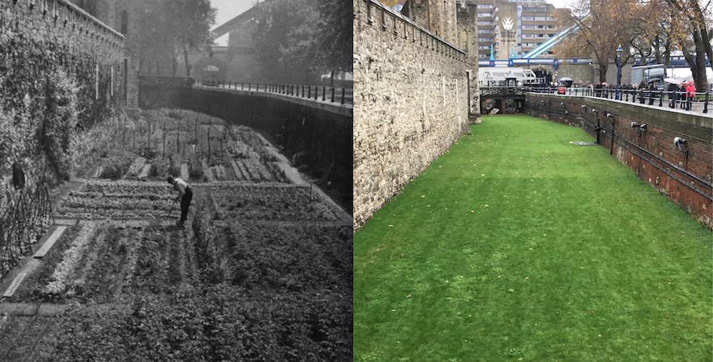 Then and now: The south moat at @TowerOfLondon with vegetable allotments in 1940 and its current state in 2016 #GQT https://t.co/J3kQdoy4Ry