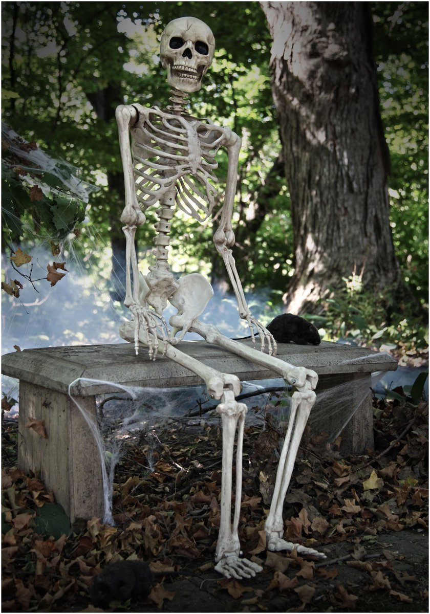 Paddy holohan on twitter me waiting on eir eirsport to ring me back - Deco jardin halloween ...