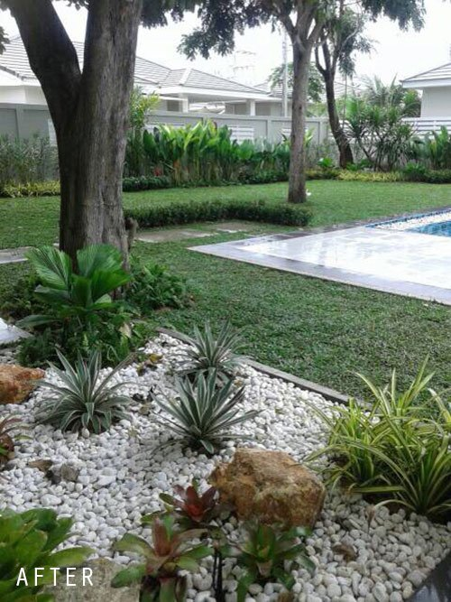 Thai Garden Design On Twitter New Landscaped Garden By Thai