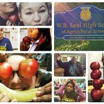 Nov. 12th is the last day to vote for #SaulGoesSolar and their #Apples4Ed campaign. Twitter or Instagram your apples selfies today!