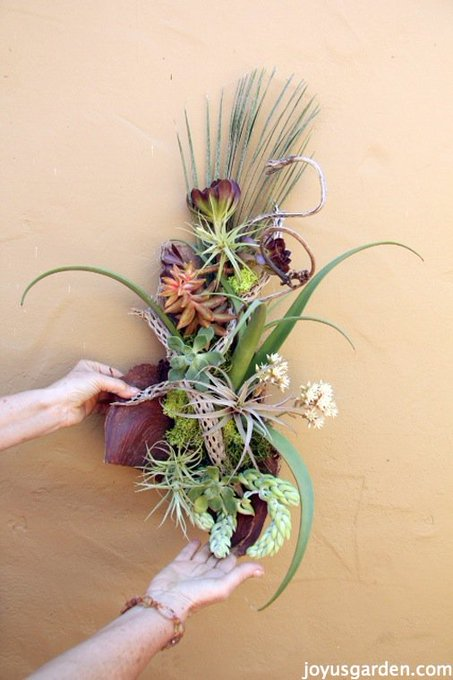 Palm Debris is Wonderful for Creating Succulent Art. succulents gardening craft DIY