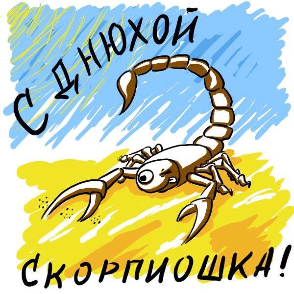 поздравления для скорпионов в картинках