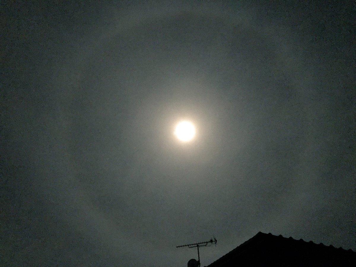 の 周り に 見える 光 輪 の 月