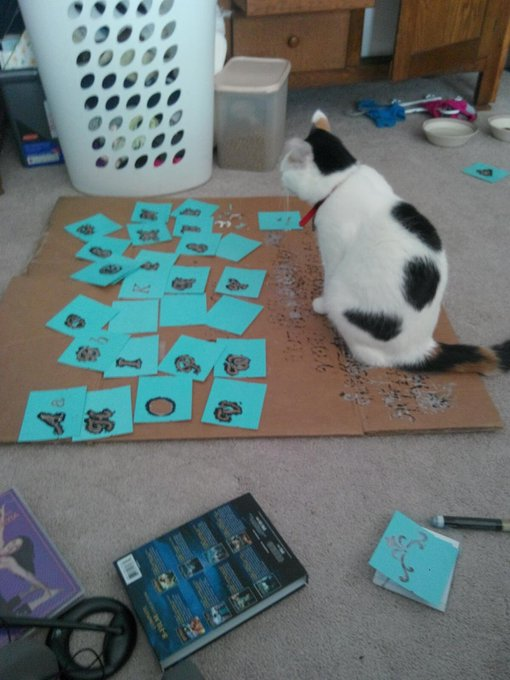 Cats like crafting too!! cat CatsOfTwitter crafts crafting blog