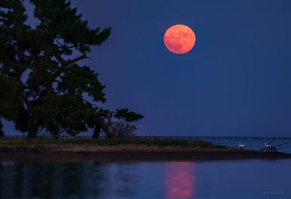 今年一番大きく見える見事な満月(スーパームーン)が昇りました。 確かに普段より明るく大きく見えています。 (先ほど青森県にて撮影) https://t.co/aV1xBe2wSi