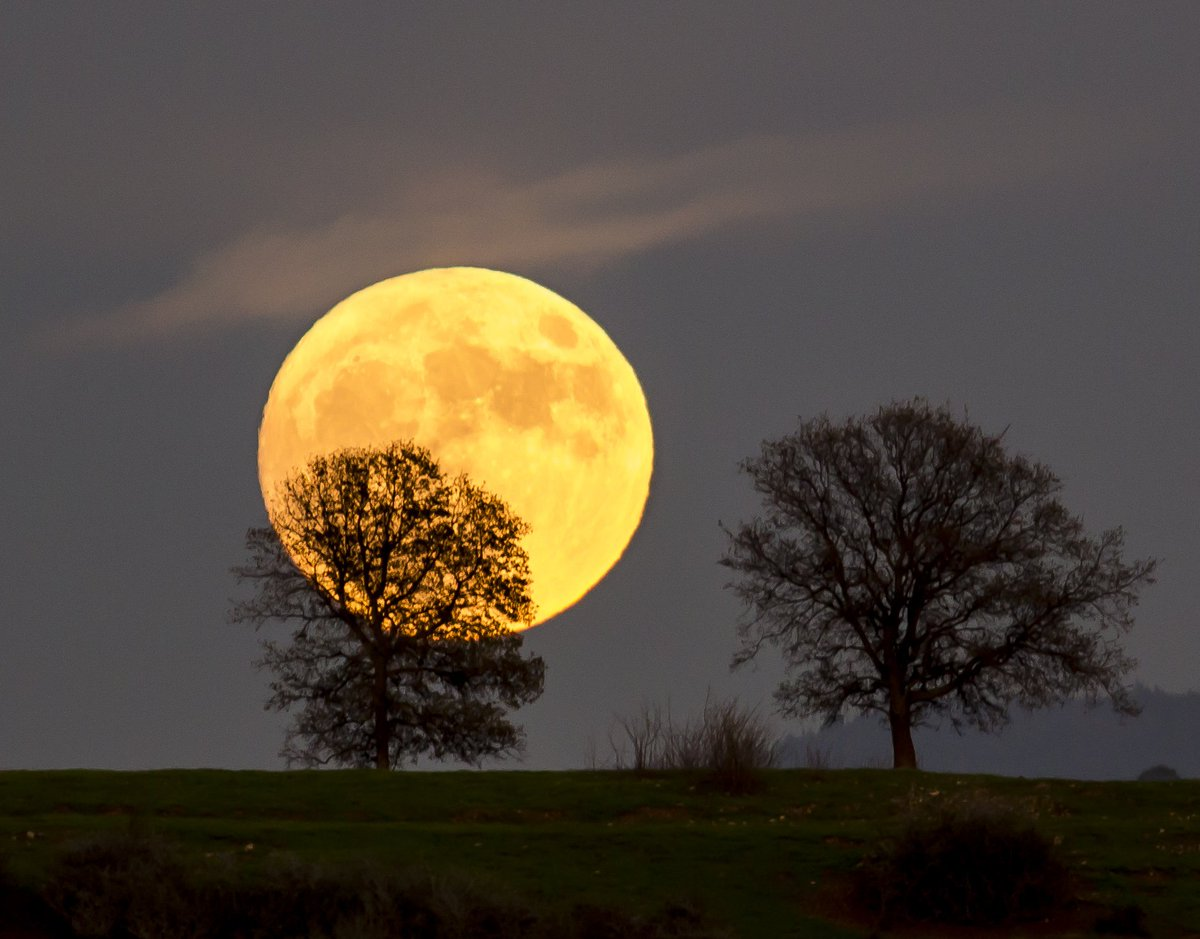 Did you catch last night's #supermoon 🌕? Here's a glimpse from Cronan Ranch #California