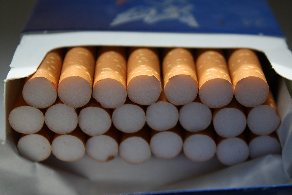 Twenty cigarettes a day for a year equals 150 lung cell mutations: https://t.co/lo4Zq8YrAM https://t.co/LyGNIeXyfp