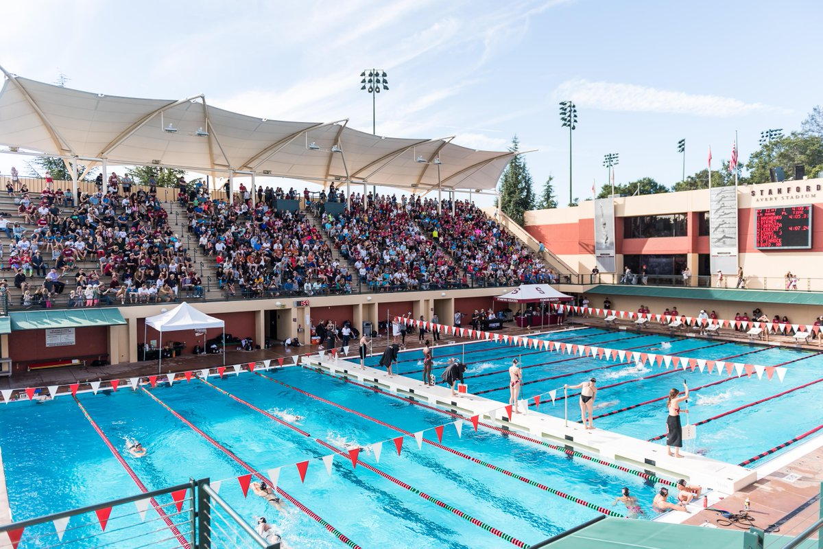 Stanford W Swim Dive Stanfordwswim Twitter