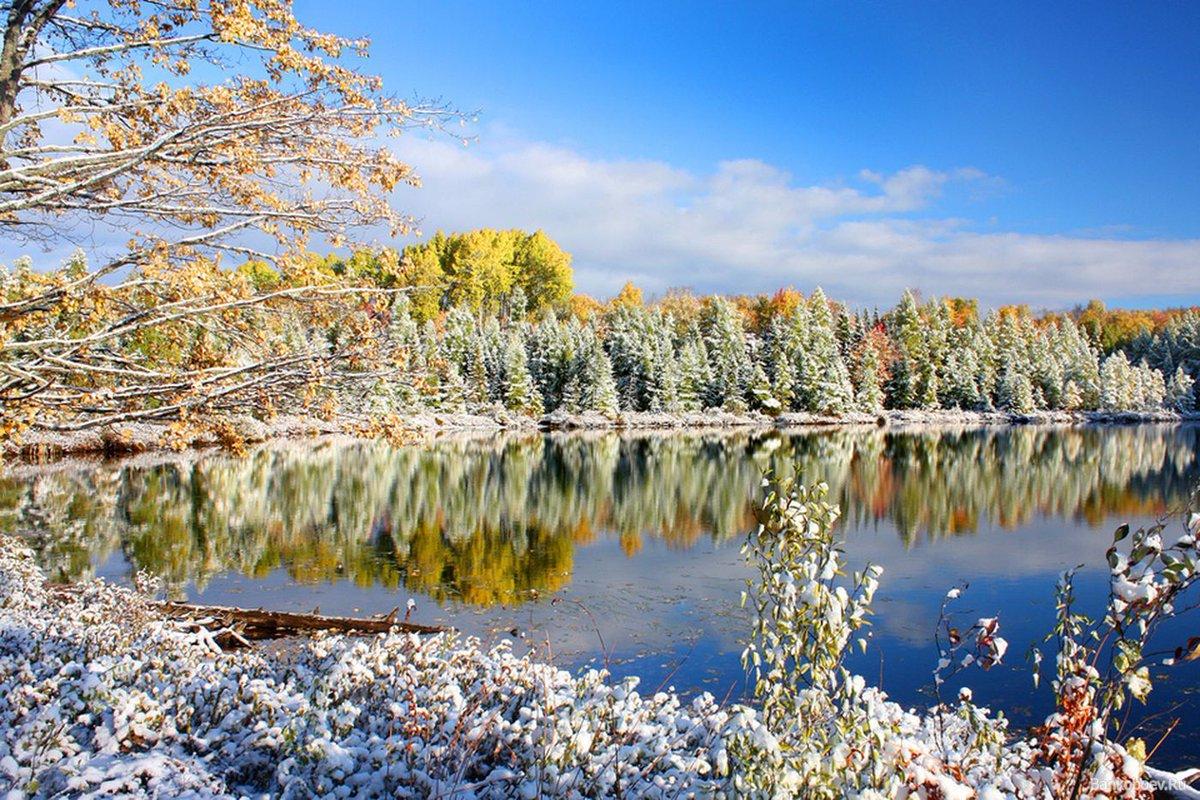 Природа в конце ноября фото