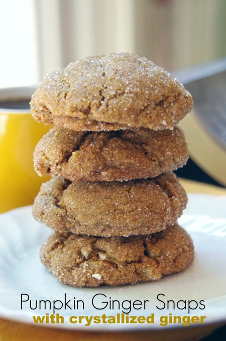 Pumpkin Ginger Snaps with Chewy Crystallized Ginger Chips. ://