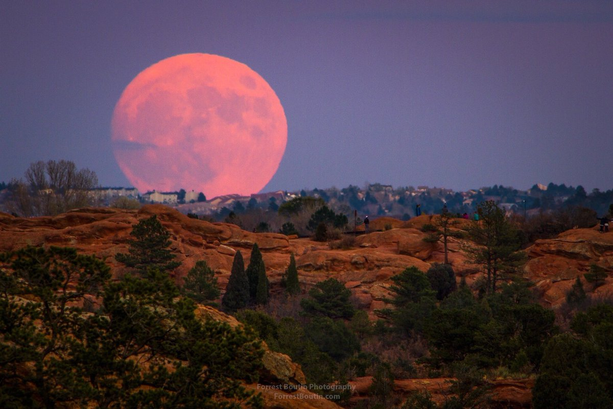 21 of the most awe-inspiring photos from the biggest #supermoon in 70 yrs. By Forrest Boutin https://t.co/vEHXrDuOQh https://t.co/N7Ao1wNuwX