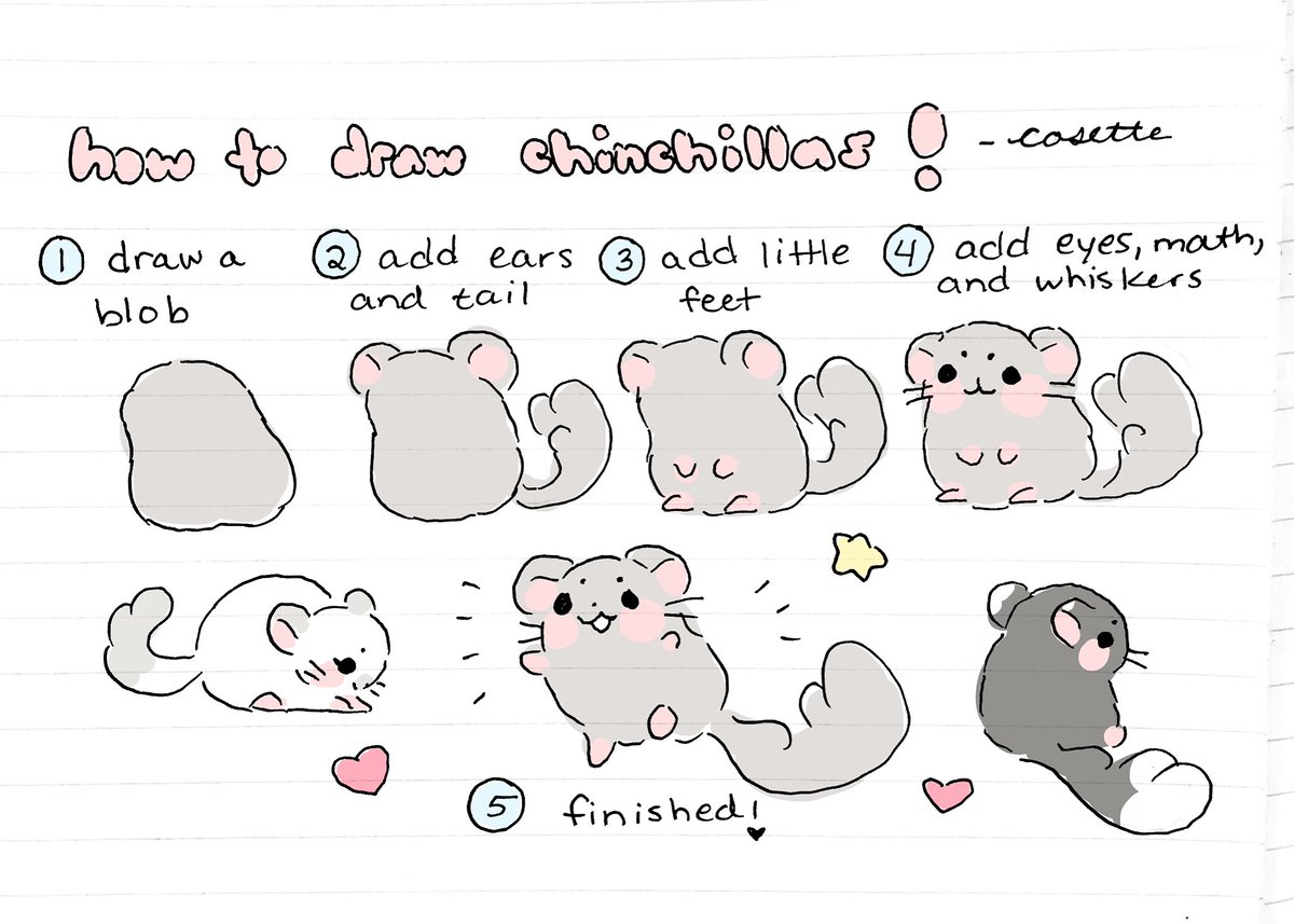 cosette on twitter someone on tumblr asked me how i draw chinchillas so heres a little tutorial i made