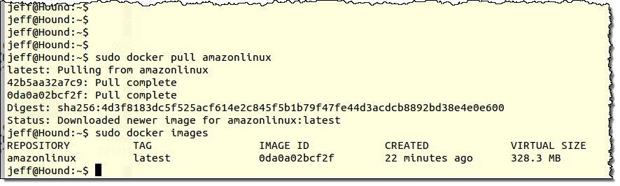 Amazon Linux Image now available on #Docker Hub: https://t.co/GcRYb9xunC #AWS #EC2 https://t.co/nhEPGUKvX7