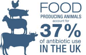 Day 3 #worldantibioticawarenessweek. Did you know UK farmers care for over 1bn farm animals each year? See https://t.co/gftG9yR4Bo for more. https://t.co/mJGW1oBA4X