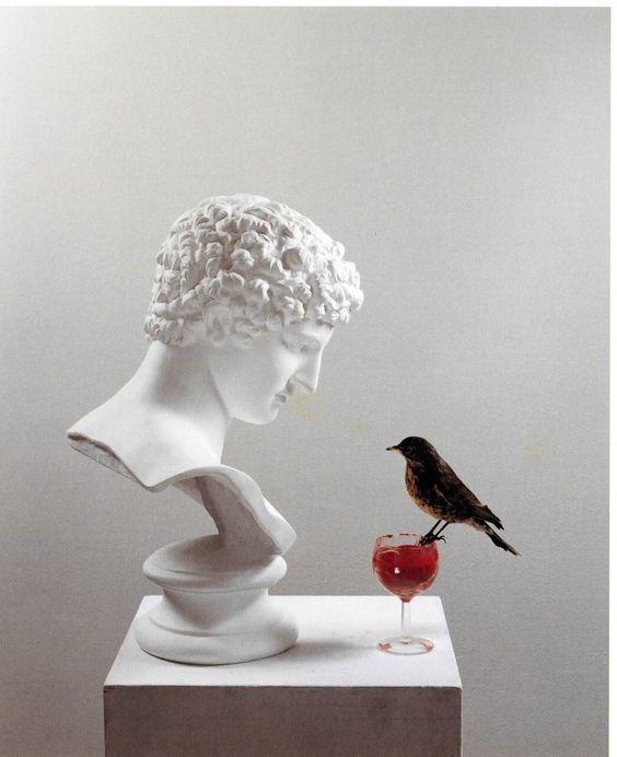 Vīnum animī speculum. | Wine is the mirror of the mind. | El vino es el espejo del espíritu. #Sententiae https://t.co/Kiq6B6BD7t